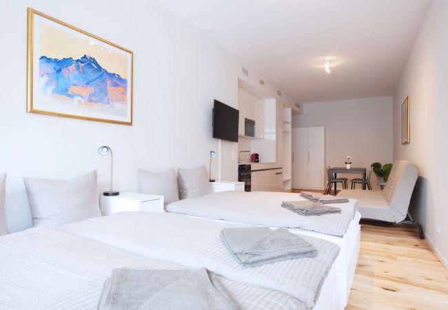 Basel - Квартира-студия